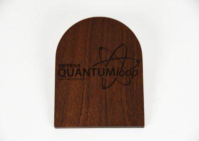 ORTEGA Quantum Expression