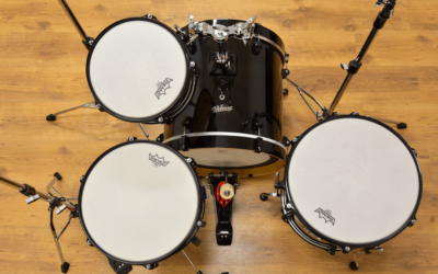 BeatIt Test: Polmuz Birch Model 4 Prototype Kit